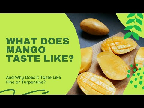What Does Mango Taste Like? How Does a Mango Taste Like Pine (Tree) or Turpentine and Why?